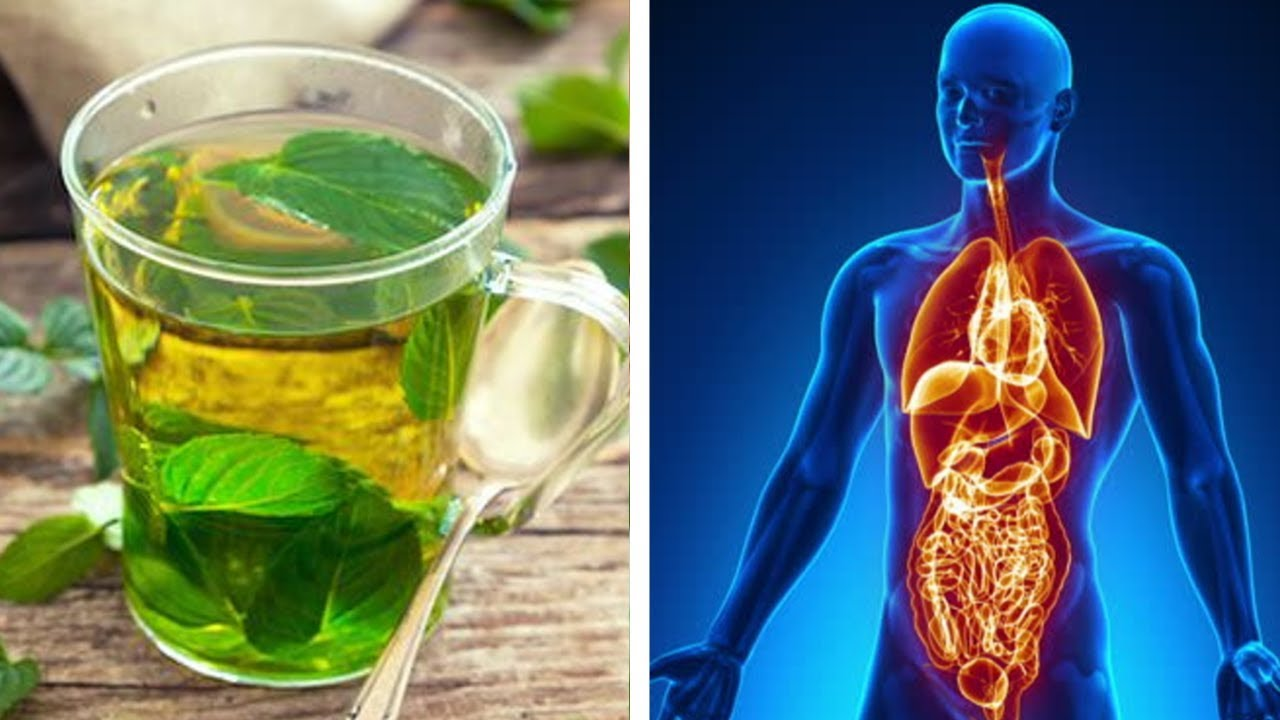 Reverse Diabetes Naturally: 7 Powerful Lemon Balm Benefits You Need to Know | Nutrition Facts