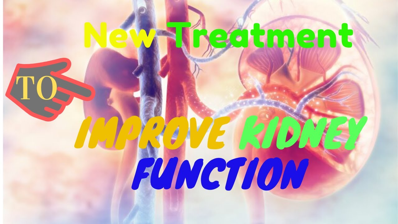 The Kidney Disease Solution -  Kidney Treatment